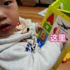 #育儿##宝宝##小番茄#15m+,看书的时候除了宝宝指妈妈念,也可以换个方向妈妈说,让宝宝指也是一种锻炼😘下次读书的时候一起试试吧,双击给小番茄一个❤他会很开心哒~@美拍小助手 @宝宝频道官方账号