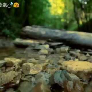 #风景#美丽的东溪古镇