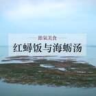 #红蟳饭与海蛎汤#大寒进补,看看福建人怎么吃!#美食##海鲜#
