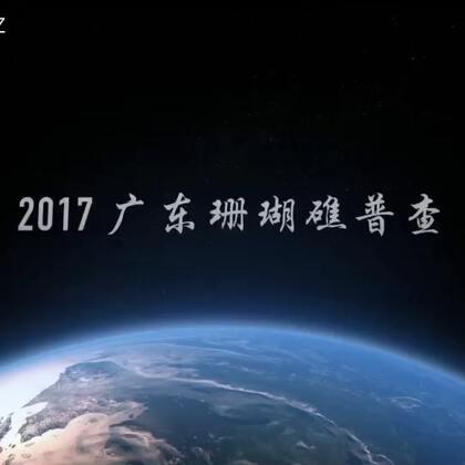 2017广东珊瑚礁普查闭幕视频#珊瑚礁##水肺潜水##公益#❤