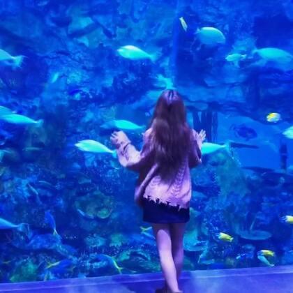 我想做一条鱼,游进你的心里💙#音乐##精选#@美拍小助手