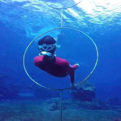 初级自由潜课程第二天,高强度的训练下三位小伙伴辛苦了!许哥刚在我们这里考完OW就直接报名学自由潜,另外两位小美女都来自我的美拍粉丝,期待了很久的自由潜梦终于实现了!#自由潜##运动##水下摄影#