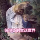 英国湖区:彼得兔(Peter rabbit)的梦幻世界。