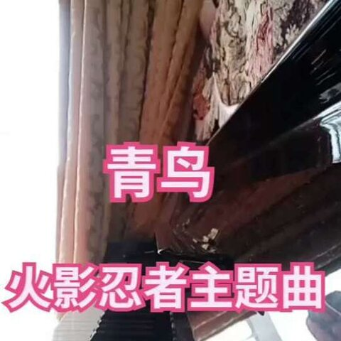 青鸟钢琴谱简谱