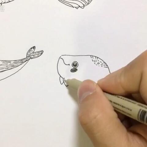 鱼和海豚,这期简笔画赶快学起来