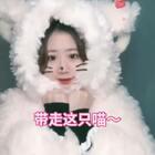 #精选#请带走这一只喵可好?