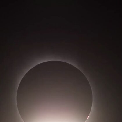 今天的#蓝血月亮#你看了吗?