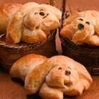 做个可爱的狗狗造型小面包做早餐吧,爱心满满Q弹可爱🐶🐶#我要上热门##半夏食谱##美食#