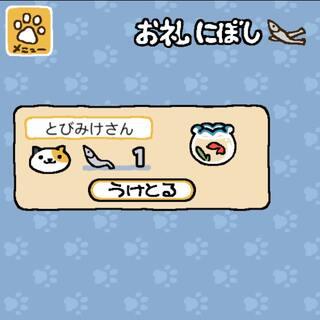 你好意思吗?猫咪先生(女士)?#猫咪后院#