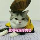 #我的少林梦手势舞##宠物#包纸:我已练成深厚内功,稳如泰山!😄😂#顶顶神功#