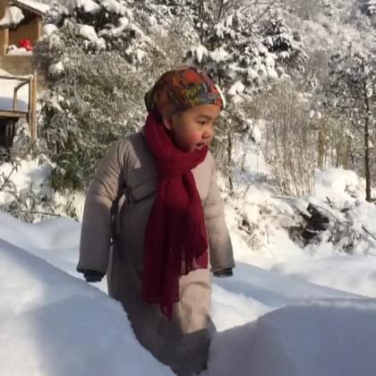 二宝在终南山的雪里晒太阳
