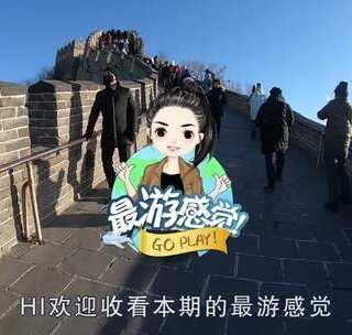 让游客笑哭!美女在长城买火腿喂野猫,引发山上群猫夺食大战!#猫咪##长城##吸猫#