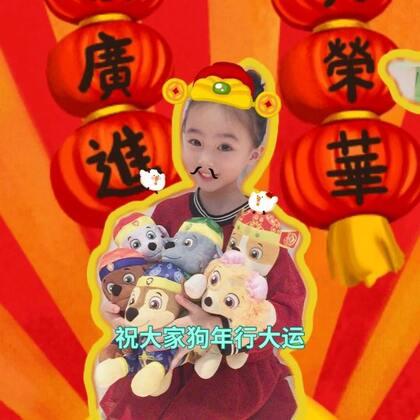 祝大家狗年大吉#精选##宠物#@宝宝频道官方账号 @美拍小助手