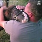 这就是为什么我们喜欢动物。。。万物皆有灵性,看着真的好暖心!❤