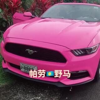 喜欢这个粉粉色的车车。你们喜欢吗?#旅游##带着美拍去旅游#
