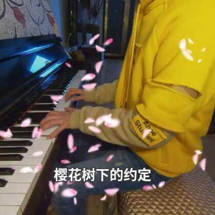 #音乐##精选#钢琴曲名为«#樱花树下的约定#»