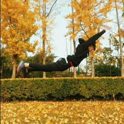 #运动##美拍运动季##街头健身#年度超强花式俯卧撑集锦!😇@洁癖男、爱跑酷 @街头运动健身达人 @流浪汉木村 @F-kk @Er.pao