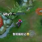#游戏##搞笑##王者荣耀# 前几天由于过年段子断更了!现在继续起飞😂😂😂