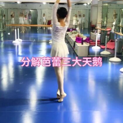 #芭蕾##舞蹈分解教学##舞蹈#三大天鹅分解,之二😎