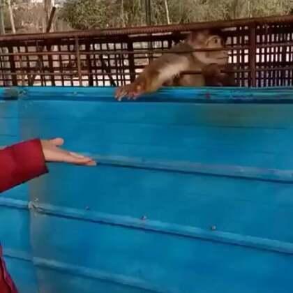 你敢打我?