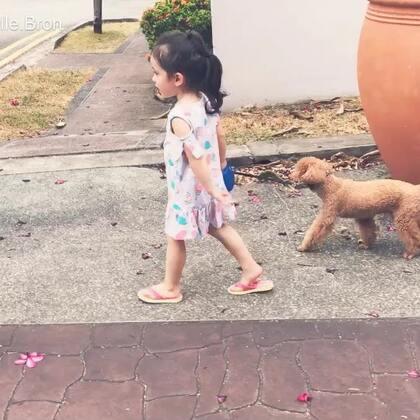 以前经常溜kobe的一条路,现在成为了回家的必经之路之一,特别喜欢这条路没有车,不用担心看着这两只😀#宝宝##Annie&Kobe#