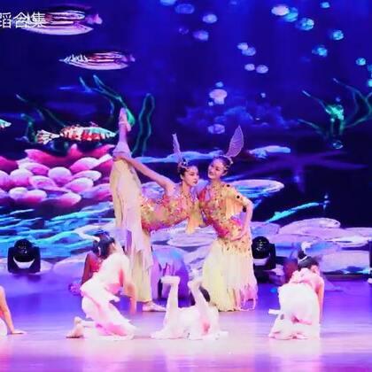#单色舞蹈2017年优秀作品展演#海洋里有这样一群欢快活泼的小鱼儿,她们无忧无虑,自由自在。#宝宝#们演绎《鱼儿欢歌》,真是一群机灵的小小鱼~咨询#舞蹈#微信:danse68