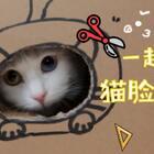 mimo:做饭阿姨又在做什么玩意儿?猫脸纸箱?朕马上来试试!#宠物##mimo#