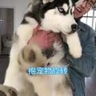 #抱宠物旋转大赛#它们没事,我倒晕了...😂