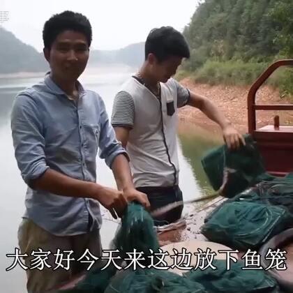 农村小哥带着十几副鱼笼,进山捉野味,几十元一斤的野味太诱人了,从白天忙到天黑