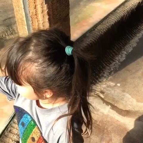 【混血三姐妹美拍】#宝宝#母女俩来到了动物园。非常...