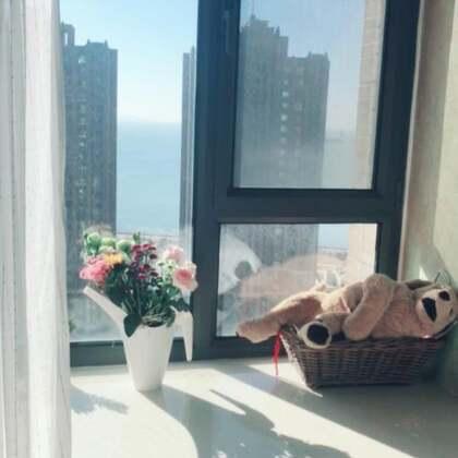 洒满阳光的早上 闻到花香 看到前面的大海 新买的白色羽毛被罩非常喜欢 洗完晾干后迫不及待的用上了 突然很想他爸 下周就可以见面啦👨👩👧#早上好##热门##精选#