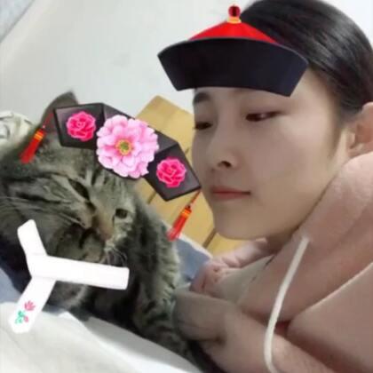 #精选##宠物#