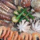 海鲜锅,鲜到掉眉毛了!时下海鲜正肥,来一锅海鲜锅,你真是赚到了!#热门##我要上热门@美拍小助手##美食#
