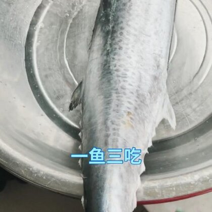 一鱼三吃。没录完就没了。在给能妈个666吧#热门##上热门##求上一次热门#