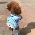一位长满身毛的孩子
