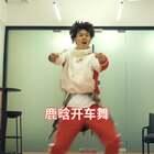 鹿晗开车舞 #鹿晗开车舞##精选##舞蹈#