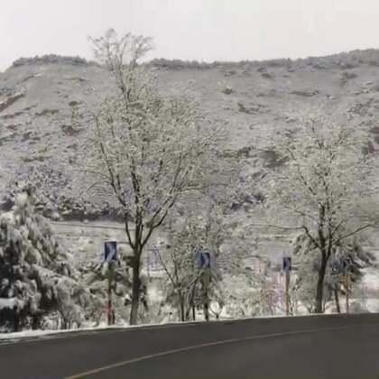 #北京##旅行##精选#北京四月飘雪,银装素裹!