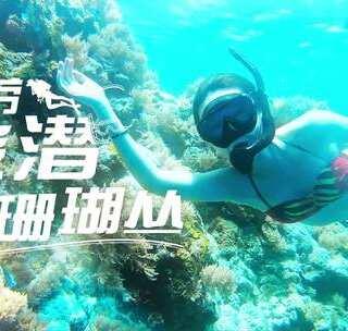 想要到帕劳潜水,旱鸭子如何才能下水看美景?#旅行##我要上热门# 看完你就知道答案了~ 你就差一个机票就能出发啦 😌 ~ #涨姿势# @漫漫浪帕劳旅游