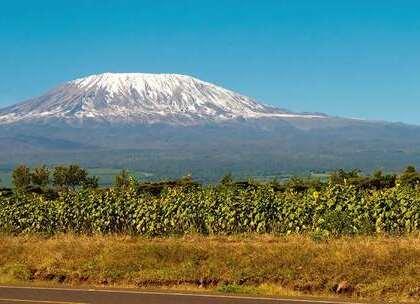 """【世界上最牛的雪山,居然位于赤道之上,真正的冰火相融! 】雪山,是很多人可望不可即的梦想,在赤道上居然也存在着雪山,那就是被称为""""非洲屋脊""""的乞力马扎罗山,它位于坦桑尼亚东北部,是坦桑尼亚和肯尼亚的分水岭,赤道与雪山的存在成了真正的冰火相融。#旅行##非洲##雪山#"""