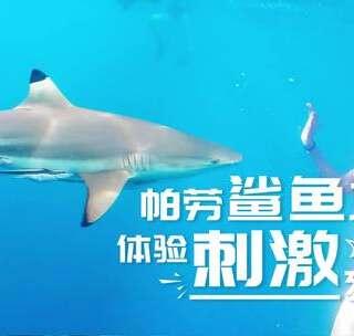 鲨鱼咬人是谣言?那些你听过的鲨鱼黑料,小u今天统统来粉碎!👊 #旅行##我要上热门# 你敢下水与鲨鱼近距离接触吗?留言告诉我你对鲨鱼的第一印象吧😁 ~#涨姿势#