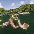 【全球最贵天然游泳池:要许可证才能进,游一次还要花费上百美元!】太平洋岛国帕劳拥有世界上最清澈的海水,这里由200多个岛屿组成,也有着世界上最贵的天然游泳池,水母湖。但游客要在这座天然泳池游泳是要收费的,约100美元才能游上几圈。#旅行##太平洋##游泳池#
