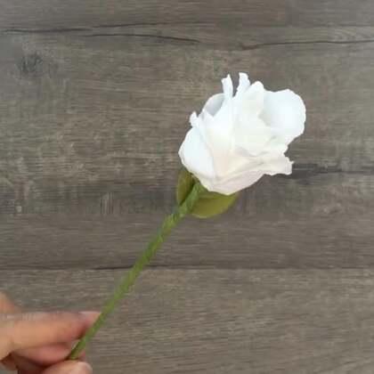 用卫生纸叠白玫瑰#手工#