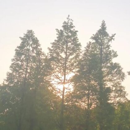 #美拍10秒电影#温暖的阳光 暖暖的风 就是随时随地的小美好
