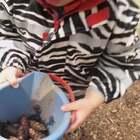 我们这里晚上啦☺️上午带Ethan去和另外俩妈咪和小朋友去吃的早茶 中午送Ethan去幼儿园 我要走的时候看到老师带着孩子们进山去探险了🤗✌️照片发在微博里 微博名字和美拍名字一模一样 没有任何标点或者符号#幼儿园##热门##精选#