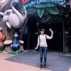 去长隆动物园看了好多动物呢!
