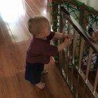 为了这个小皮猴,爷爷奶奶真是煞费苦心了😅