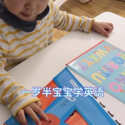 宝宝1岁半+ 宝宝学英文字母。现在宝宝的英语发音越来越标准了。#宝宝##宝宝英语启蒙##英语启蒙#