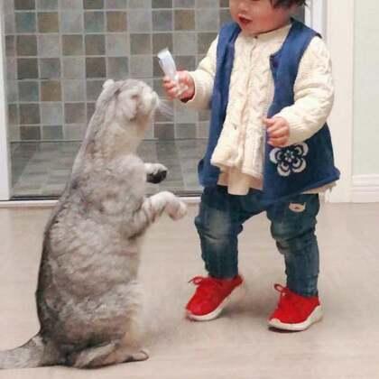 笑出鹅叫😂#宝宝##宠物#