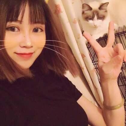 #宠物##宠物猫#最近总是失踪,因为家里的三个大佬即将生娃了,我这当妈的得照顾着。。😂