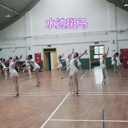 #芭蕾##少儿芭蕾##舞蹈#抓紧看哈😄不齐哟过几天删了。等穿服装能美点😊